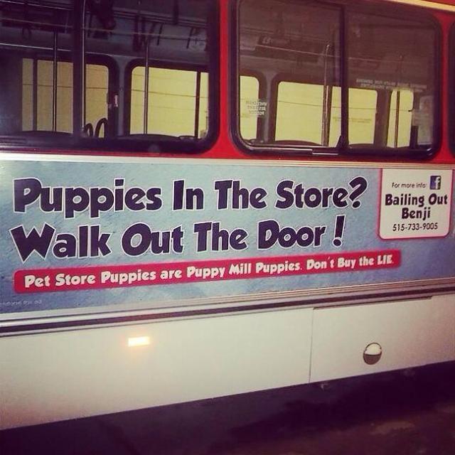 Iowa's First Puppy Mill Awareness Billboard